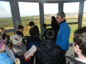 The Viewing Tower -7, Tralee Bay Wetlands